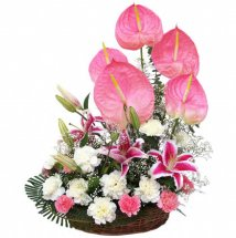 Pink+White Carnations with Pink Anthuriums in Basket