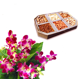 1/2 Kg Assorted Dryfruit+ 6 orchids