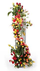 75 Coloured Roses on a Stand