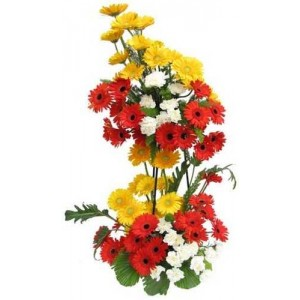 24 Mix gerberas in 2 tier