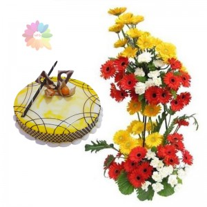 Gerberas on Stand+ 1/2�Kg Cake