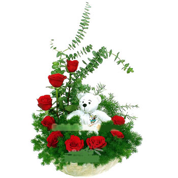 10 red roses C Shape +Teddy in same basket