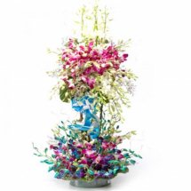 Blue and purple orchids in double basket