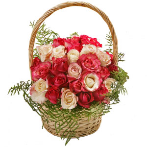 24 White and Pink Roses Basket