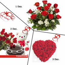 Day-1 12 redroses Day-2 12 red rose 1/2Kg chocolate cake Teddy Day-3 24 red roses heart