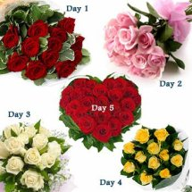 Day-1 12 red roses Day-2 12 pink roses Day-3 12 white Roses Day-4 12 red roses Day-5 24 Red roses heart