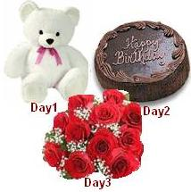 Day-1 Teddy Day-2 1/2 Kg Chocolate Cake Day-3 12 red roses