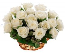 Basket of 12 White roses